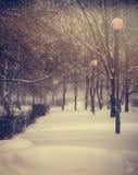 Invierno Nevadas en la ciudad Foto de archivo libre de regalías