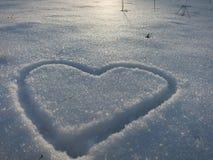 Invierno Nevado Foto de archivo