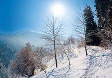 Invierno Nevado en montaña Fotos de archivo libres de regalías