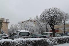 Invierno, nieve en el árbol del fnd de la cerca imagen de archivo