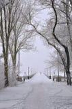 invierno, nieve, puente peatonal, niebla Imagen de archivo libre de regalías