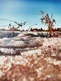 ¿Invierno o primavera? Imágenes de archivo libres de regalías