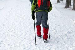 Invierno que va de excursión en montañas fotos de archivo