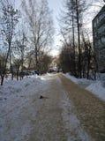 Invierno ruso Fotos de archivo libres de regalías