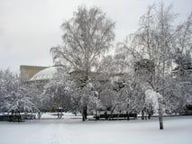 Invierno ruso Fotografía de archivo libre de regalías