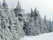 Invierno Ski Mountain fotos de archivo