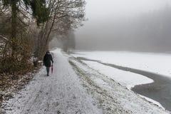 Invierno solo de los árboles de la trayectoria que camina del paraguas de la muchacha Imagen de archivo