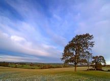 Invierno Sun Imagen de archivo libre de regalías