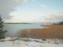 Invierno temprano en la orilla del ` s del lago Foto de archivo