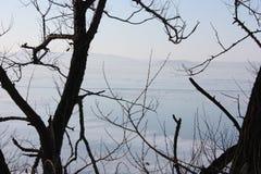 Invierno, Vladivostok, Rusia imagen de archivo