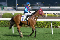 Invincible Dragon wins the Beas River Handicap in Hong Kong Stock Images