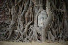 invisible en Thaïlande Image stock