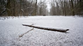 Invisible tripping hazzard. A hard to see snow covered stick on a snow covered path Stock Images