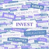 INVISTA Imagem de Stock Royalty Free