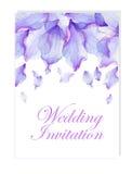 Invitación con los pétalos de la flor de la acuarela Imagen de archivo