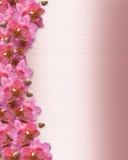 Invitación de la boda de la frontera de las orquídeas Foto de archivo libre de regalías