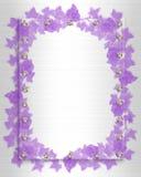 Invitación de la boda del elemento de la frontera de la hiedra ilustración del vector