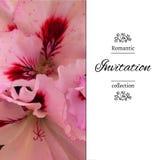 Invitación de la boda en estilo romántico EPS, JPG Fotografía de archivo libre de regalías