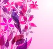 Invitación floral Foto de archivo libre de regalías