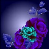 Invitación floral para los acontecimientos de vida Fotos de archivo libres de regalías