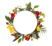 Invitación o diseño floral de la tarjeta de felicitaciones con el espacio redondo de la copia Imagen de archivo