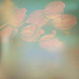 Invitation with abstract floral. EPS 10 Stock Images
