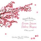 Invitation bridal shower card with sakura vector Stock Photo
