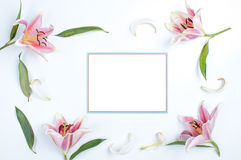 Invitation card with blue border. Lily with leaves placed around the flower petals on white stock image