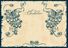 Invitation or card with blue peacock. Vintage invitation or card with blue outline peacock vector illustration