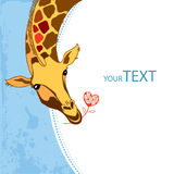 Invitation card with cute Giraffe with a flower Royalty Free Stock Photography