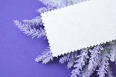 Invitation card with empty space for text on lavender background Royalty Free Stock Photography