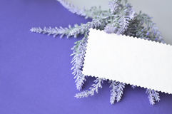Invitation card with empty space for text on lavender background Royalty Free Stock Image