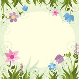Invitation card  with  flower frame . Vector illustration Royalty Free Stock Photos