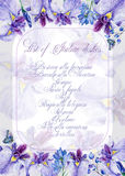 Invitation card. Greeting card with irises. Stock Images