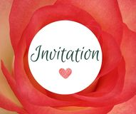 Invitation card vector illustration