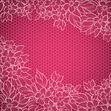 Lace background Royalty Free Stock Images