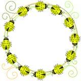 Invitation Card Ladybugs Wreath Stock Photography
