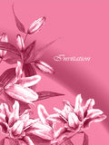 Invitation card lilies Royalty Free Stock Image