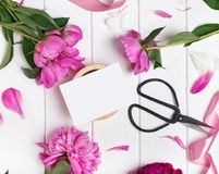 Invitation or card mock-up with beautiful peonies. On white wooden background royalty free stock photography