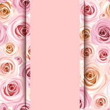 Invitation card with pink roses. Vector eps-10. Royalty Free Stock Photos