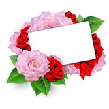 Invitation card with roses Stock Image
