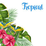Invitation card with tropical leaves and flowers. Palms branches, bird of paradise flower, hibiscus.  stock illustration