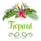 Invitation card with tropical leaves and flowers. Palms branches, bird of paradise flower, hibiscus Royalty Free Stock Images