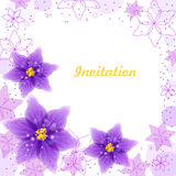 Invitation card witn violet flowers and floral ornament. Stock Photos