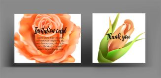 Invitation cards with orange rose. Use for wedding,greeting ,tha Stock Photo