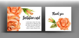 Invitation cards with orange rose. Use for wedding,greeting ,tha Royalty Free Stock Photography