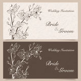 Invitation cards. Set of wedding invitation cards with orchid flower, vector illustration Royalty Free Stock Image