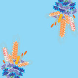 Invitation corners on blue background with flower ornament. Stock Photos