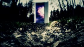 Invitation Cosmos Galaxy. Mysterious forest with a door. The door to space stock video