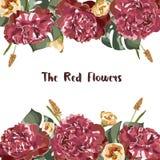 Invitation de carte de voeux avec floral rouge dans le jardin, illustration Images stock